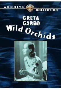 Wild Orchids kapak