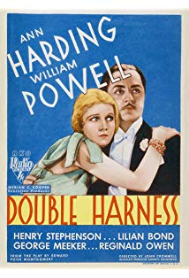 Double Harness kapak