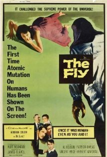 The Fly kapak