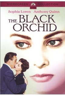 The Black Orchid kapak