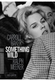 Something Wild kapak