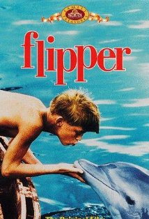 Flipper kapak