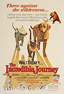 The Incredible Journey kapak