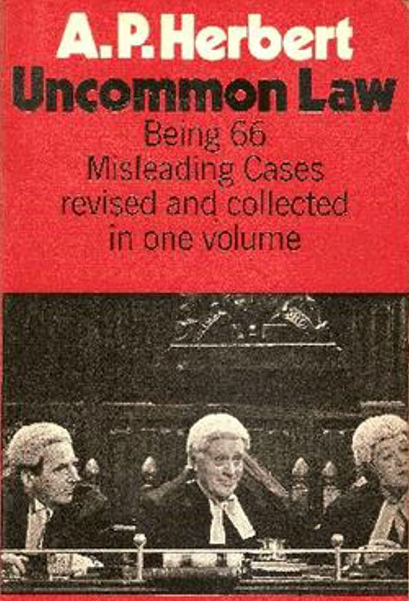 Misleading Cases kapak