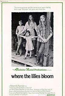 Where the Lilies Bloom kapak