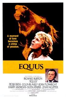 Equus kapak