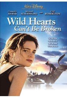Wild Hearts Can't Be Broken kapak