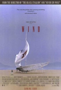 Wind kapak