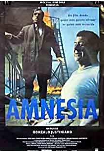 Amnesia kapak