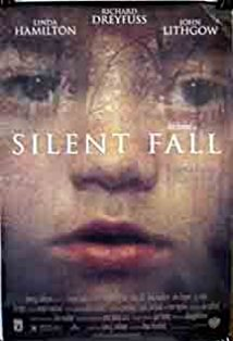 Silent Fall kapak