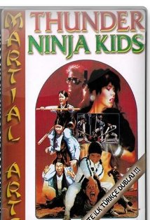 Thunder Ninja Kids in the Golden Adventure kapak