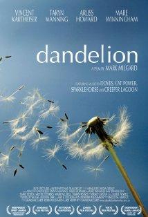 Dandelion kapak