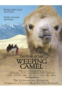 Die Geschichte vom weinenden Kamel kapak