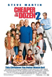 Cheaper by the Dozen 2 kapak