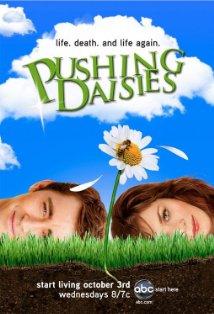 Pushing Daisies kapak