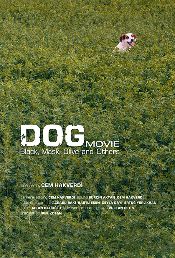 Köpek filmi kapak