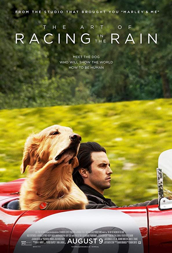 The Art of Racing in the Rain kapak