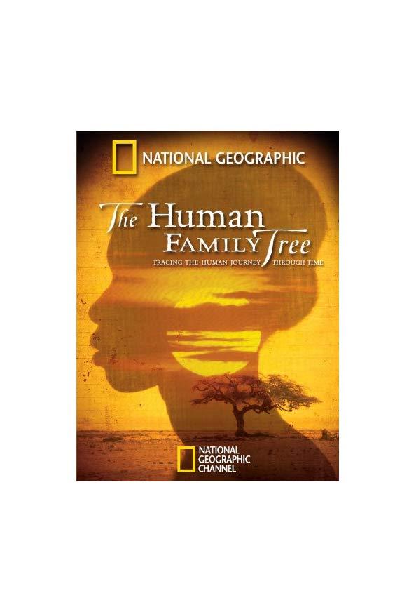 The Human Family Tree kapak