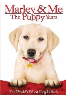 Marley & Me: The Puppy Years kapak