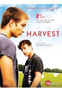 Harvest kapak