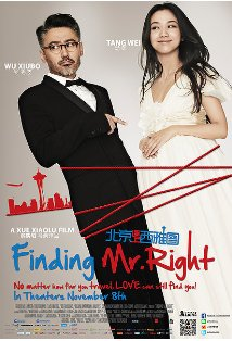 Finding Mr. Right kapak