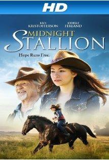 Midnight Stallion kapak