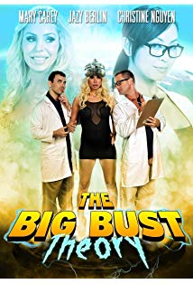 The Big Bust Theory kapak