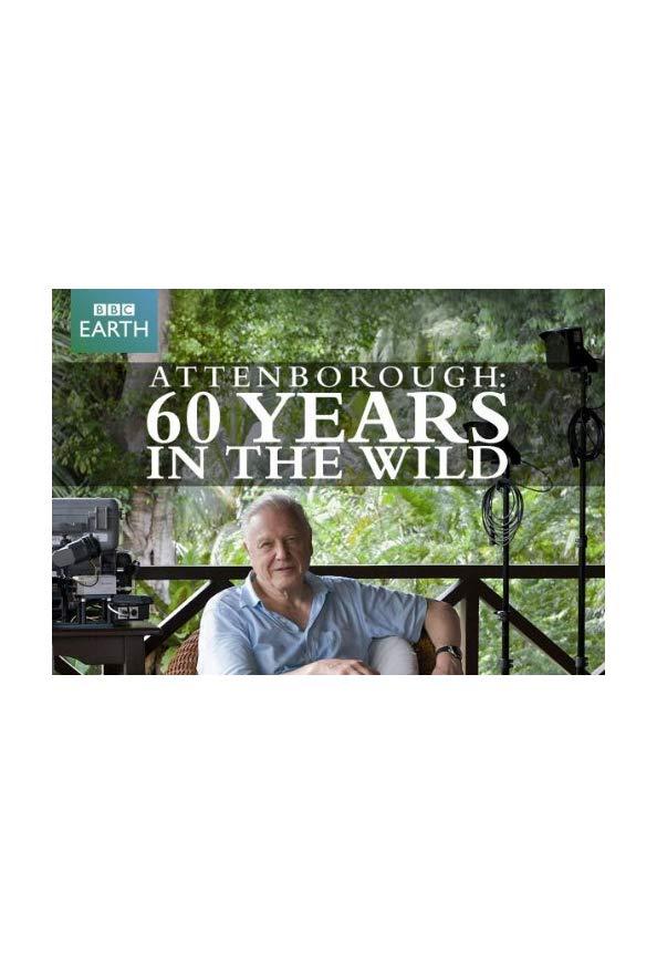 Attenborough: 60 Years in the Wild kapak