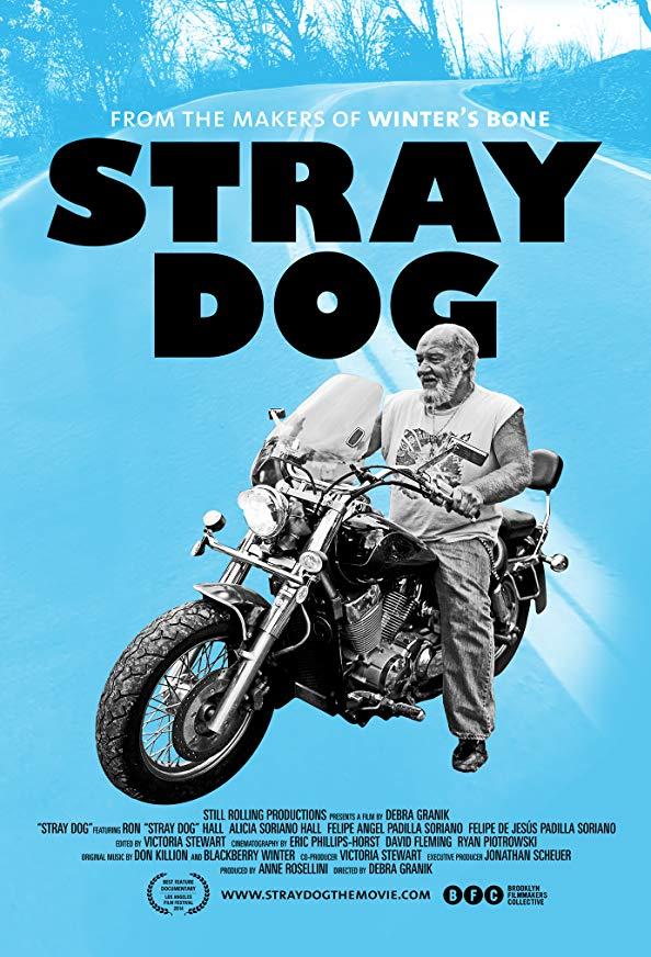 Stray Dog kapak
