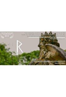 From Runes to Ruins kapak
