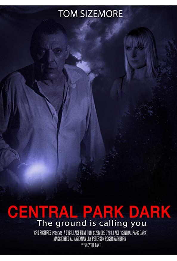 Central Park Dark kapak