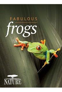 Nature Fabulous Frogs kapak