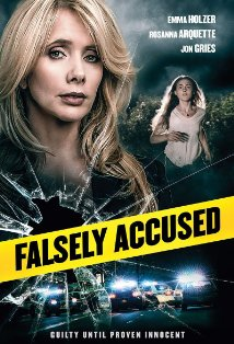 Falsely Accused kapak
