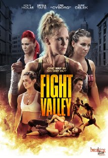 Fight Valley kapak