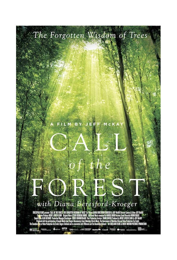 Call of the Forest: The Forgotten Wisdom of Trees kapak