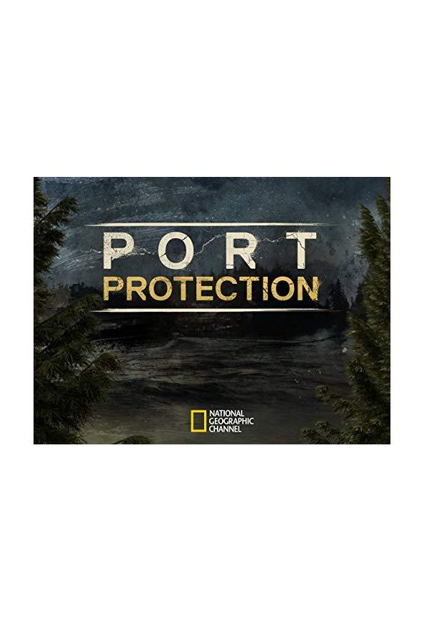 Port Protection kapak