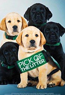 Pick of the Litter kapak