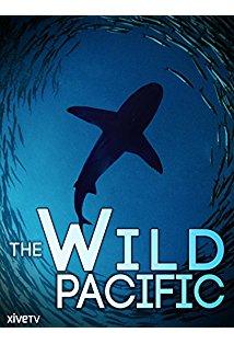 The Wild Pacific kapak
