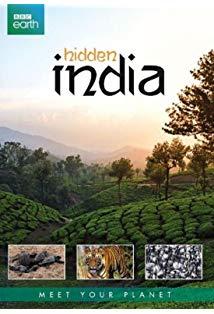 Hidden India kapak