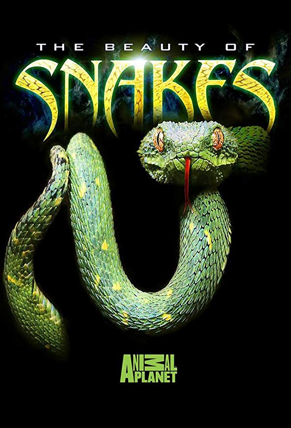 Beauty of Snakes kapak