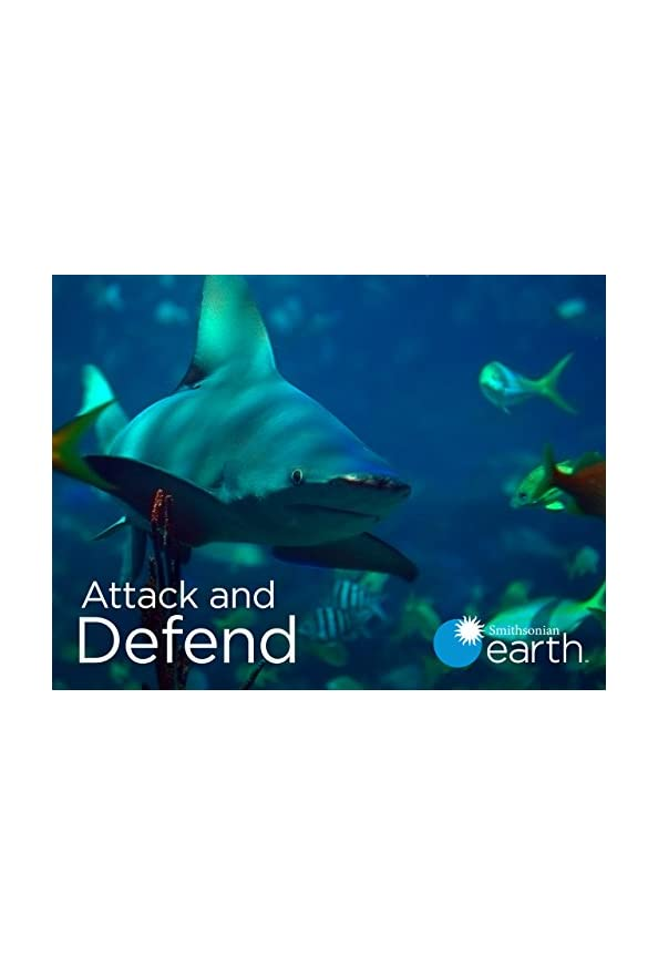 Attack and Defend kapak