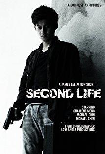 Second Life kapak