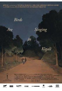 Ptaki spiewaja w Kigali kapak