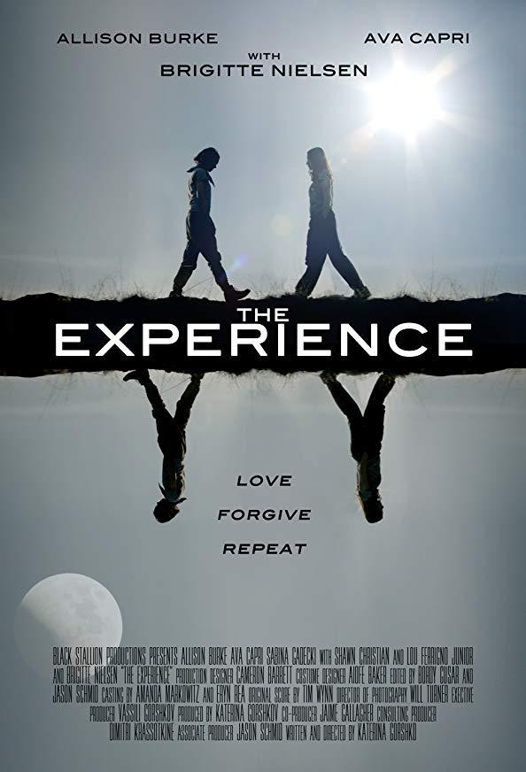 The Experience kapak