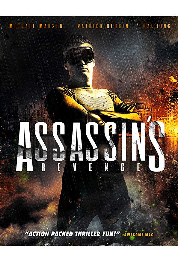Assassins Revenge kapak