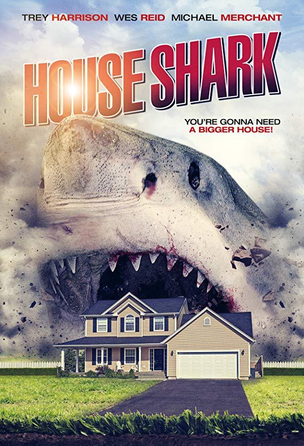 House Shark kapak