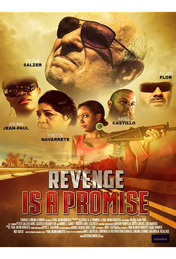 Revenge Is a Promise kapak