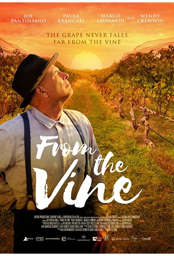 From the Vine kapak