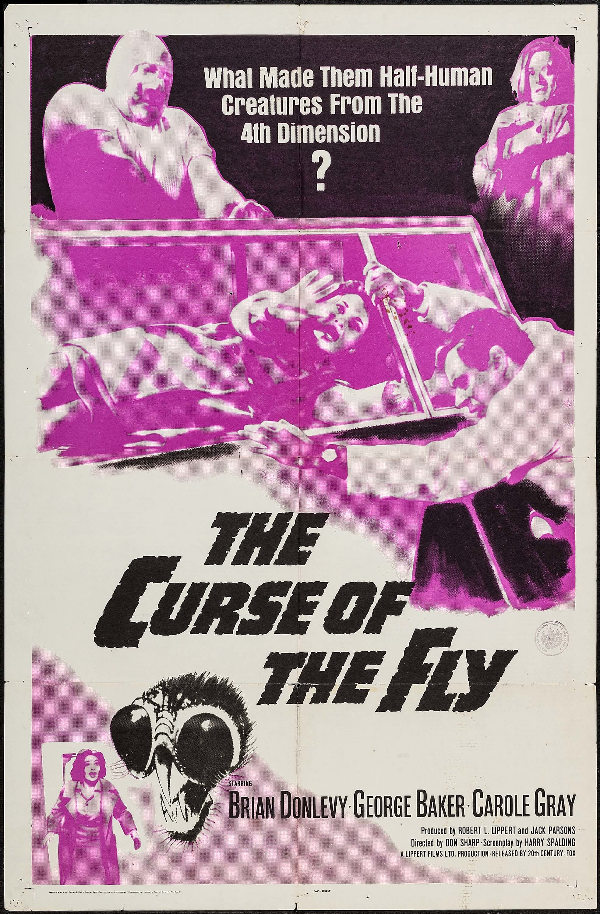 Curse of the Fly kapak