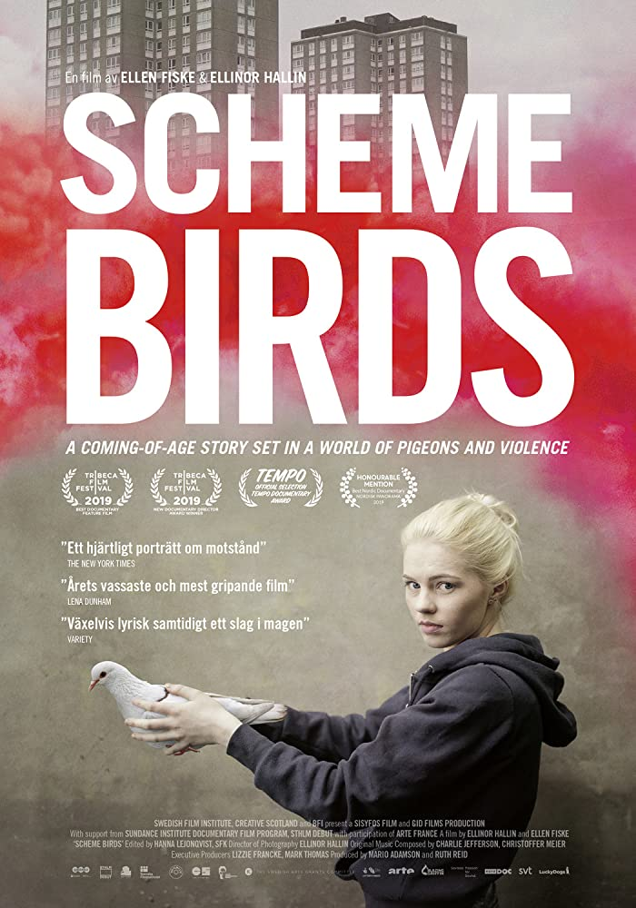 Scheme Birds kapak